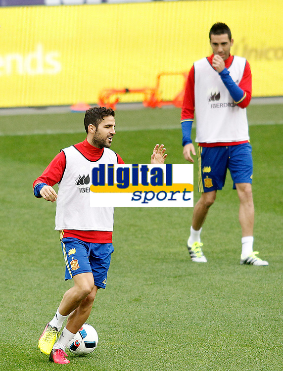 Spain's Cesc Fabregas (l) and Bruno Soriano during training session previous friendly match. May 31,2016.(ALTERPHOTOS/Acero)