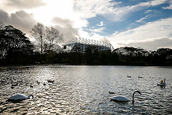 A general view of the stadium from a local park - Photo mandatory by-line: Rogan Thomson/JMP - 07966 386802 -01/11/2014 - SPORT - FOOTBALL - Newcastle, England - St James' Park - Newcastle United v Liverpool - Barclays Premier League.