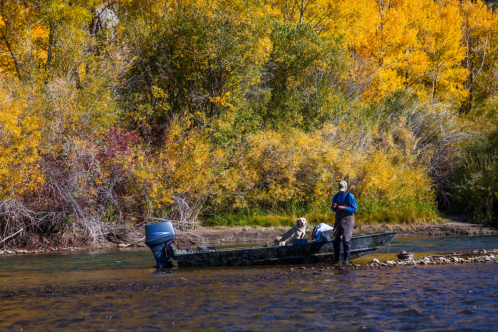 Fly Fisherman and his Yellow Labrador fish the South Fork of the Snake River with autumn color as a backdrop.  Licensing and Open Edition Prints.