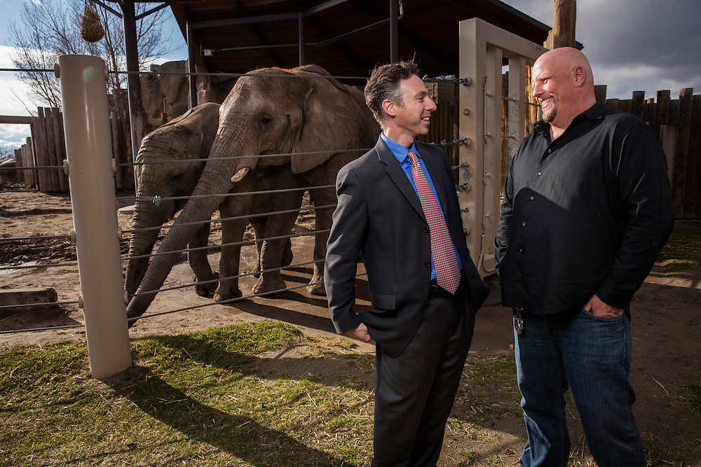Dr. Joshua Schiffman, left and Eric Peterson stand in front of the elephants at Hogle Zoo. Dr. Schiffman is doing cancer research on why elephant rarely get cancer. Eric Peterson is the elephant manager at Hogle Zoo in Salt Lake City,  Utah Thursday March 31, 2016. (August Miller)