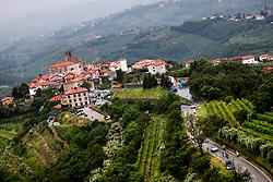 Peloton at Smartno in Goriska Brda during 4th Stage of 26th Tour of Slovenia 2019 cycling race between Nova Gorica and Ajdovscina (153,9 km), on June 22, 2019 in Slovenia. Photo by Matic Klansek Velej / Sportida