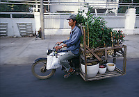 """Mobile garden, Saigon, Vietnam<br /> Available as Fine Art Print in the following sizes:<br /> 08""""x12""""US$   100.00<br /> 10""""x15""""US$ 150.00<br /> 12""""x18""""US$ 200.00<br /> 16""""x24""""US$ 300.00<br /> 20""""x30""""US$ 500.00"""