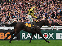 National Hunt Horse Racing - 2019 Cheltenham Festival - Friday, Day Four (Gold Cup Day)<br /> <br /> R Townsend on Al Boum Photo celebrates as he crosses the finish line in the 15.30 Magners Cheltenham Gold Cup steeple chase at Cheltenham Racecourse.<br /> <br /> COLORSPORT/ANDREW COWIE