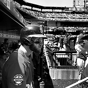 DUGOUT DAYS. Moments in the dugouts of both home and away teams during the New York Mets 2015 season