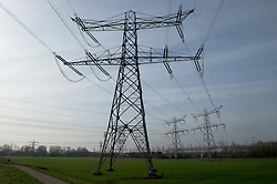 High voltage power lines carry electricity produced at the Essent Energie power station in Geertruidenberg, Netherlands, on Monday, March 22, 2010.  Essent Energie is owned by RWE AG. (Photo © Jock Fistick)