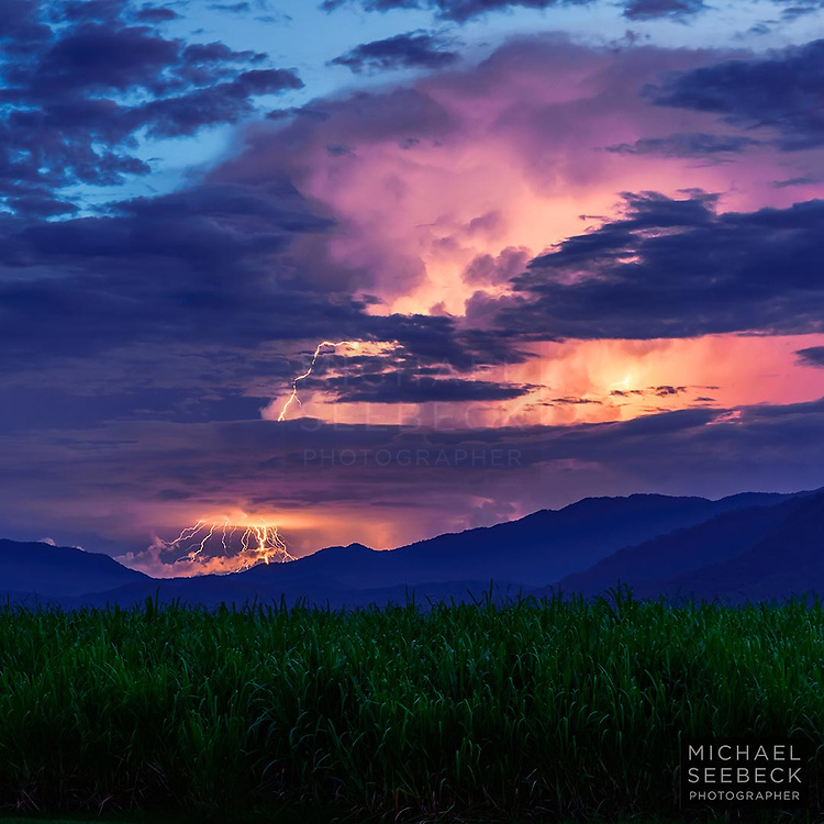 Lightning strikes the coastal range behind Cairns, as thunderstorm moves east over the Atherton Tablelands. Sugar cane is in foreground.<br /> <br /> Code: SAQT0015<br /> <br /> Limited Edition Print