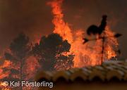 V. 01. Valencia 29/08/2003. Una veleta se ve recortada contra el fuego del incendio de Buñol que ha afectado ya unas 500 hectareas de monte y cuyo extinción se ve dificultada por el fuerte viento de poniente. EFE / Kai Försterling.