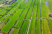 Nederland, Friesland, Smallingerland, 01-05-2013; Drachtstercompagnie, voormalige veenkolonie. De langwerpige stroken zijn het gevolg van het afgraven van het veen voor de productie van turf.<br /> Land in strips in the northern Netherlands caused by peat extraction.<br /> luchtfoto (toeslag op standard tarieven)<br /> aerial photo (additional fee required)<br /> copyright foto/photo Siebe Swart