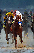 **ALTERNATE CROP** Justify with Mike Smith up crosses the finish line to win during the 144th Kentucky Derby at Churchill Downs Saturday, May 5, 2018, in Louisville, KY. (Wade Payne via AP Images)