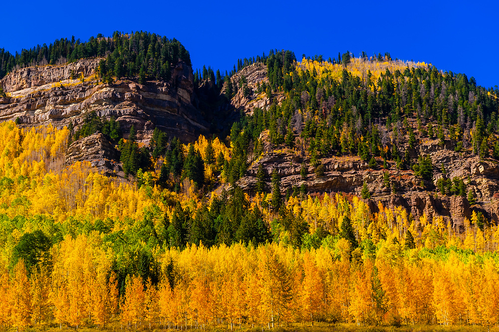 Fall color, Colorado Highway 550, San Juan Mountains, north of Durango, Colorado USA.