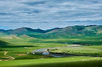 Mongolie, province de Ovorkhangai, la vallée de l'Orkhon, campement nomade // Mongolia, Ovorkhangai province, Orkhon valley, nomad camp