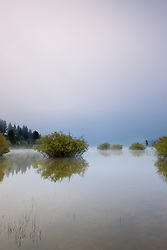 """""""Prosser Reservoir Morning""""- Photographed from a kayak in the early morning at Prosser Reservoir, Truckee."""