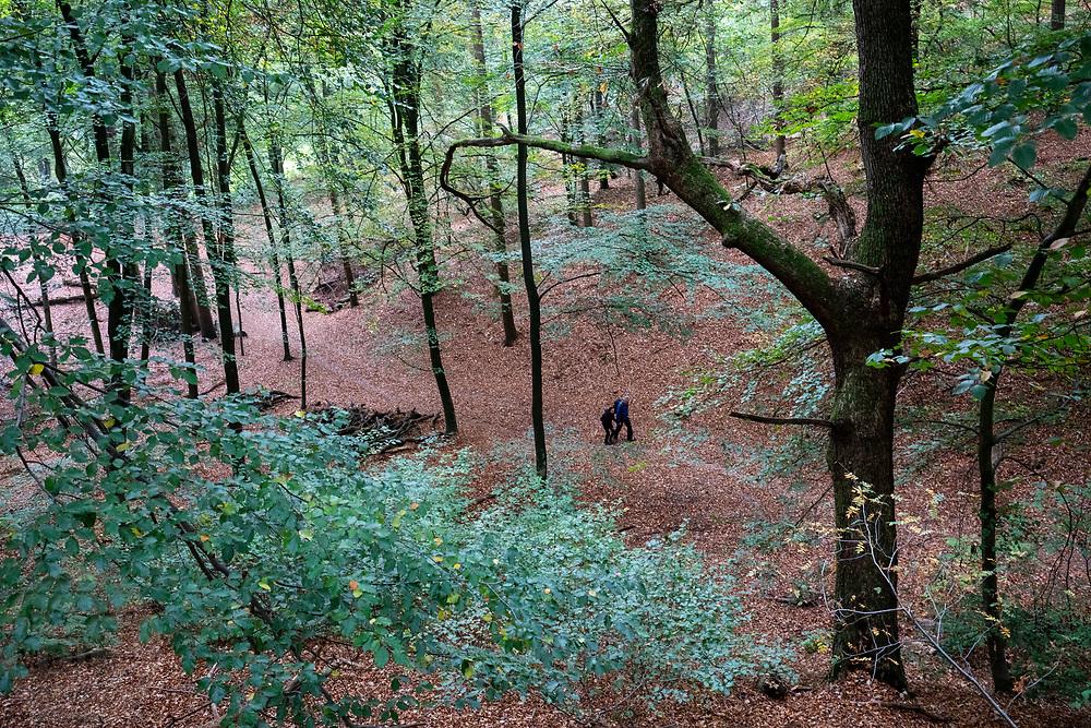 Een stel loopt in het bos bij Berg en Dal.<br /> <br /> A couple walks in the woods near Berg en Dal.