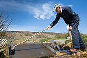 Welsh sheep farmer Howell Williams cleaning the intake at the entry point to the farms 15kW hydro power plant on the Brecon Beacons, Wales.