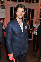 DAVID GANDY at One Night Changes Everything - a fundraising evening for the 2013 Comic Relief Campaign held at The Royal Opera House, London on 28th February 2013.