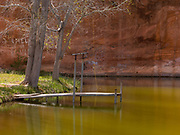 A southern Utah swimming hole and rope swing with a red rock background and old Cottonwood Trees