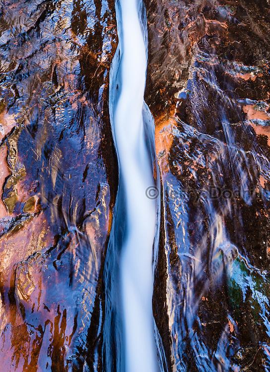 Left Fork of North Creek. Zion National Park, Utah.