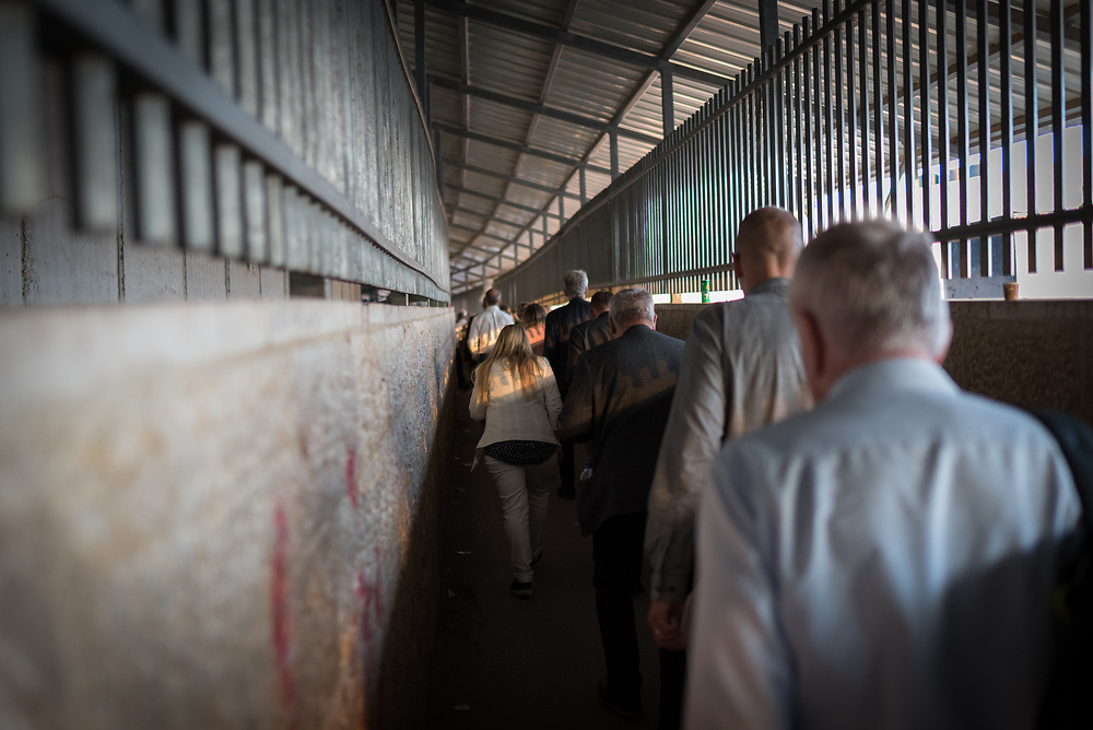 12 October 2018, Bethlehem, Occupied Palestinian Territories: The separation barrier cuts through Bethlehem, separating the Israeli side from the Palestinian one. Here, a group of visitors walk towards Checkpoint 300, to cross into Israel.