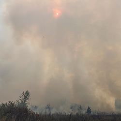The sun shines through smoke at a prescribed burn on the grassland at The Nature Conservancy's Kennebunk Plains Preserve in Kennebunk, Maine.