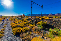 """Passengers of the Rovos Rail train  """"Pride of Africa"""" walking near Matjiesfontein on the train's journey between Pretoria and Cape Town, South Africa."""