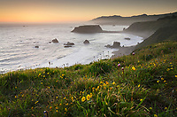 Twilight view of surf, beaches, and Goat Rock, from rugged cliffs and bluffs of Sonoma Coast State Park, California