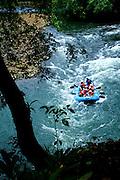 Tourists Raft The White Water Rapids On The Sarapiqui River, Costa Rica.