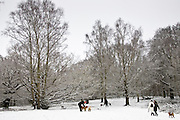 Owners walk dogs across snow-covered Hampstead Heath, North London, England, United Kingdom