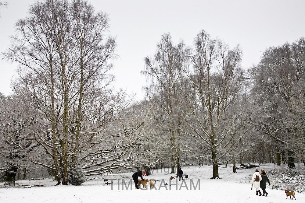 Owners walk dogs across snow-covered Hampstead Heath, North London, England, United Kingdom