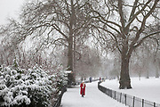 London, UK. Sunday 20th January 2013. Snow fall covering St James's Park, the oldest Royal Park in London. People come out to enjoy this winter scene.