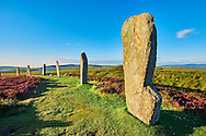 The Ring of Brodgar  ( circa 2,500 to circa 2,000 BC) is a Neolithic henge and stone circle or henge, the largest and finest stone circles in the British Isles, Mainland Orkney, Scotland .<br /> <br /> Visit our SCOTLAND HISTORIC PLACXES PHOTO COLLECTIONS for more photos to download or buy as wall art prints https://funkystock.photoshelter.com/gallery-collection/Images-of-Scotland-Scotish-Historic-Places-Pictures-Photos/C0000eJg00xiv_iQ<br /> '<br /> Visit our PREHISTORIC PLACES PHOTO COLLECTIONS for more  photos to download or buy as prints https://funkystock.photoshelter.com/gallery-collection/Prehistoric-Neolithic-Sites-Art-Artefacts-Pictures-Photos/C0000tfxw63zrUT4
