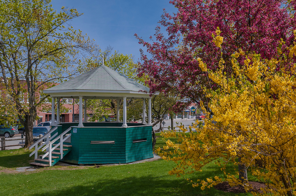 Gazebo bandstand and flowering trees in spring, forsythia & crabapple, Plymouth, NH