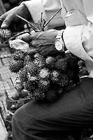 A man preparing rambutans for sale.