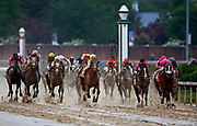 during the 145th running of the Kentucky Derby Saturday, May 4, 2019, in Louisville, Tenn. (Wade Payne via AP Images)