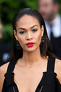 Joan Smalls attends the amfAR 22st Annual Cinema Against AIDS during the 68th Cannes Film Festival at Hotel du Cap-Eden-Roc in Cap d'Antibes, southern France, on May 21, 2015.