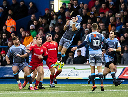 Matthew Morgan of Cardiff Blues claims the high ball<br /> <br /> Photographer Simon King/Replay Images<br /> <br /> European Rugby Champions Cup Round 4 - Cardiff Blues v Saracens - Saturday 15th December 2018 - Cardiff Arms Park - Cardiff<br /> <br /> World Copyright © Replay Images . All rights reserved. info@replayimages.co.uk - http://replayimages.co.uk
