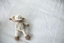 Teddy bear lying on bed, Munich, Bavaria, Germany