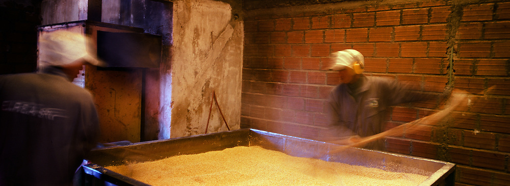 "Workers process the harvested quinoa in a small factory in Challapata, Bolivia. .The nutritional qualities of the seed have generated a new export market for South American farmers. Demand for the grain-like seed are increasing due to its nutritional benefits. Quinoa contains more protein than any other ""grain"" and includes all eight essential amino acids needed for tissue development. Quinoa has been cultivated in the Andes since 3000BC. Challapata, Bolivia, 12th May 2011. Photo Tim Clayton"