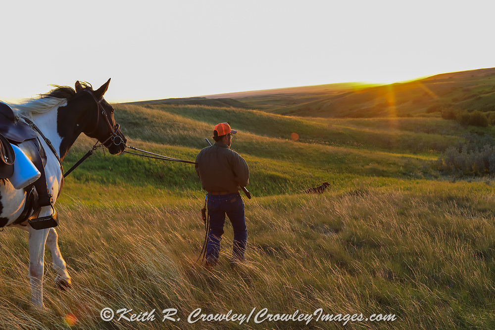 John Zeman, approaches his locked up German shorthair, Louie,  during a Montana grouse hunt.