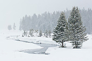 Yellowstone National Park winter landscapes, Soda Butte Creek