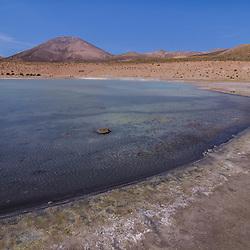 Chile - Salar Surire