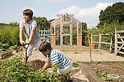 Edward, 12 and Joseph, 12, in their vegetable garden at Hares Farm. CREDIT: Vanessa Berberian for The Wall Street Journal<br /> UKFARM-Hares Farm