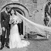 Wedding at Hoveton Hall Gardens, Norfolk