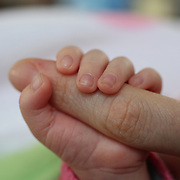The tiny hands of a two month old baby girl holding her mothers finger while asleep. Photo Tim Clayton