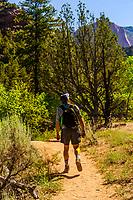 Man hiking on the Taylor Creek Trail, Kolob Canyon, Zion National Park, Utah, USA.
