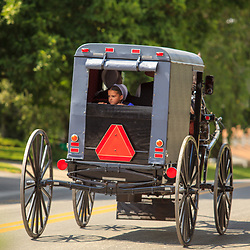 Intercourse, PA - June 17, 2012: A young Amish girl looks out the back of a horse-drawn buggy as it travels on a rural road in Lancaster County.
