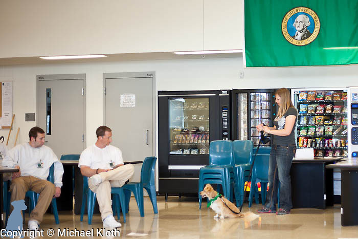 Speak Dog owner and trainer Ms. E. introducing the concept of Rally-O to two of the handlers.  She is working with Snoop who is set to be adopted to a home in Oregon.