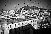 """Pontcielli (Naples). During the party the people usually throws confetti.In Ponticelli, the eastern outskirts of Naples, for 250 years, the 5th of August is celebrated the Mother of God with the title of """"Our Lady of the Snows.""""<br /> The statue of the patron is hoisted on top of the """"Wagon"""", the heavy machinery of the party of about 17 meters, carried by hand from less than a hundred men, along the streets of the neighborhood.<br /> The Virgin is enthroned above.<br /> In Via San Rocco the people, without effort, tap the wagon from the balconies, covering it sometimes with confetti.<br /> In Naples, in the places where degradation of culture and traditions are still popular, people condense in the briefest of moments, cyclical, of the party, its history daily, made of sweat, hopes, disappointments, fatigue, illness. The party therefore assumes a character of inevitability for its ability to signify all the painful complexity of life."""