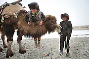 "Playing with a Bactrain camel. Arab and Afzal, two young sons of the deceased Khan, are leaving the Qyzyl Qorum camp with Bactrian camels to load up on ""Wuch"", the winter fodder for the animals. They fetch it at the autumn camp, an hour walk away...Trekking through the high altitude plateau of the Little Pamir mountains, where the Afghan Kyrgyz community live all year, on the borders of China, Tajikistan and Pakistan."