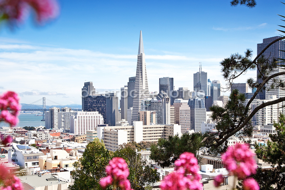 San Francisco Skyline Photos