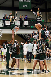 20 February 2016:  Titan Cheerleaders during an NCAA men's division 3 CCIW basketball game between the Elmhurst Bluejays and the Illinois Wesleyan Titans in Shirk Center, Bloomington IL